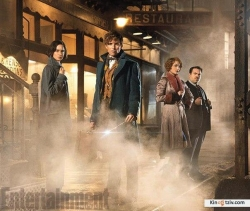 Fantastic Beasts and Where to Find Them 2016 photo.