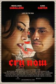 Cry Now movie cast and synopsis.