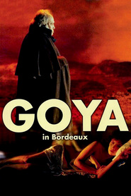 Goya en Burdeos is similar to Husbands and Wives.