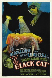 Another movie The Black Cat of the director Edgar G. Ulmer.