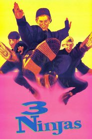 Another movie 3 Ninjas of the director Jon Turteltaub.
