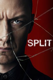 Split movie cast and synopsis.