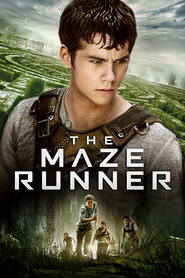 Another movie The Maze Runner of the director Wes Ball.