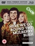 Another movie Here We Go Round the Mulberry Bush of the director Clive Donner.