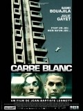 Carre blanc is similar to The World According to Garp.