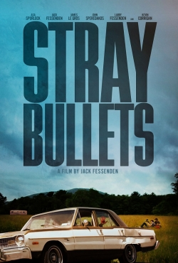 Stray Bullets movie cast and synopsis.